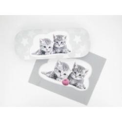 Brýlové pouzdro kočka